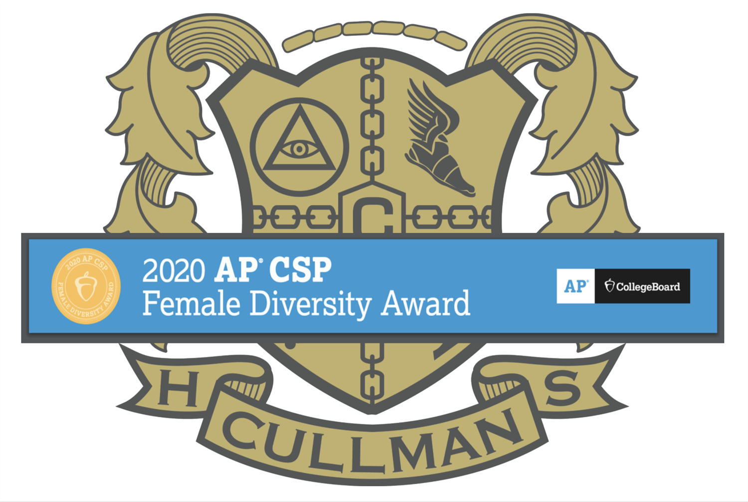 CHS logo with Diversity Award banner across